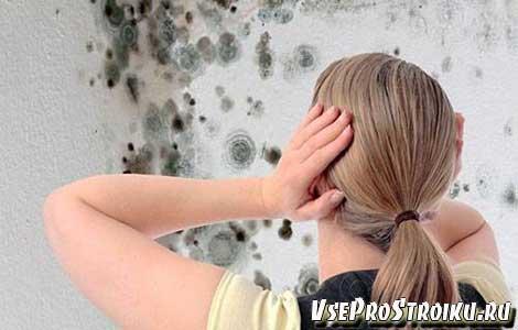 Как удалить грибок под обоями