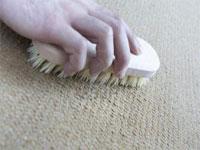 Как почистить ковер от пятен