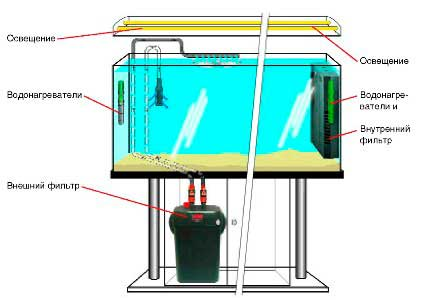 Установка внешнего фильтра в аквариум