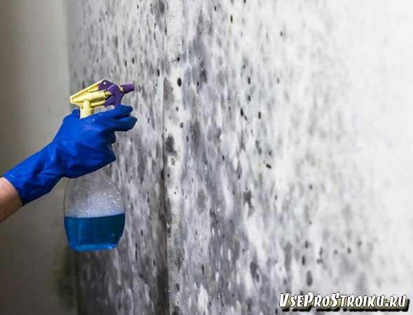 Средство от плесени и грибка на стенах